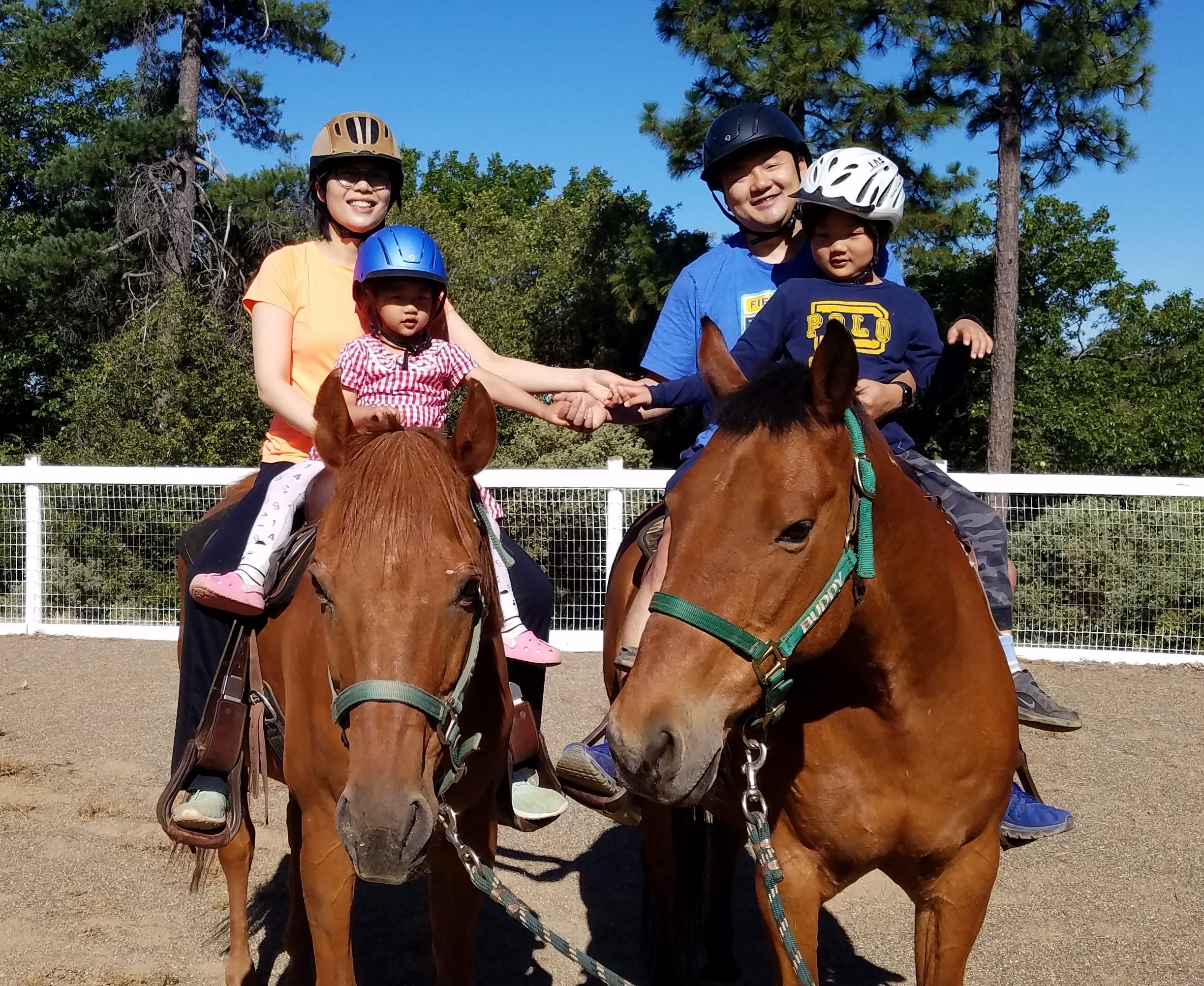 Enjoying the horses at the Dog & Pony Ranch