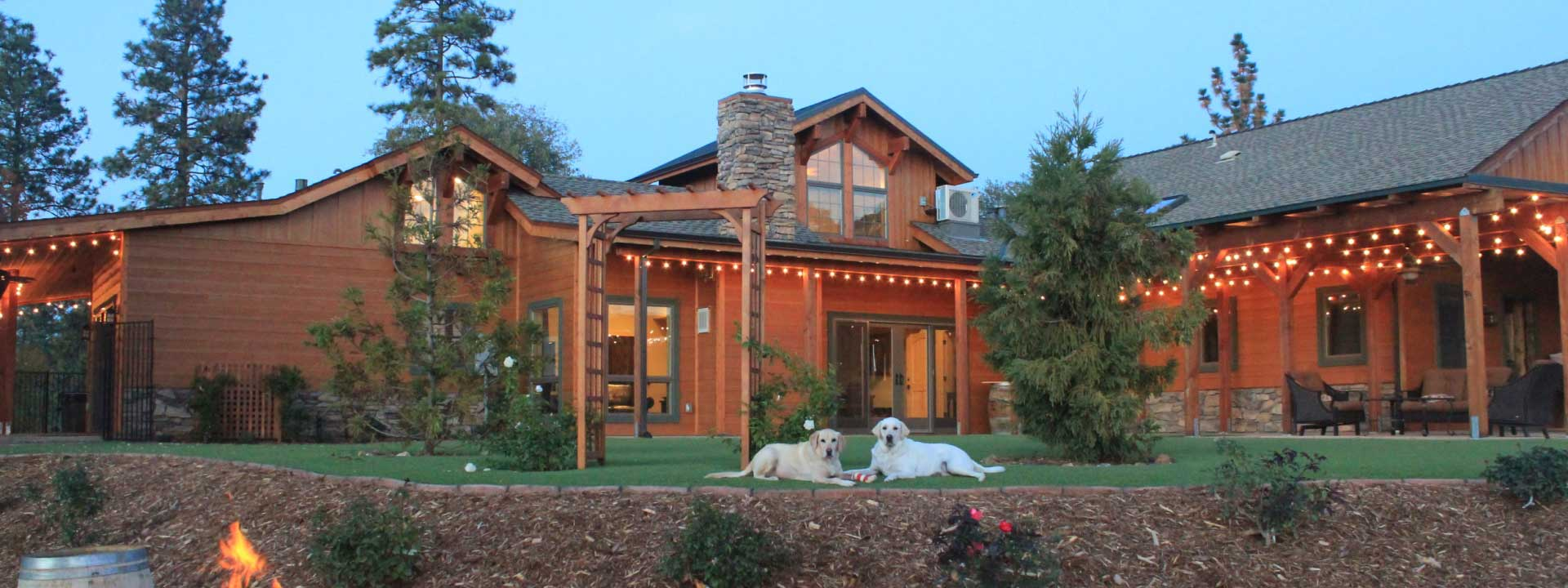 header photo of Dog and Pony Ranch